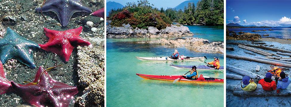 Broken Group Islands Guided Kayaking