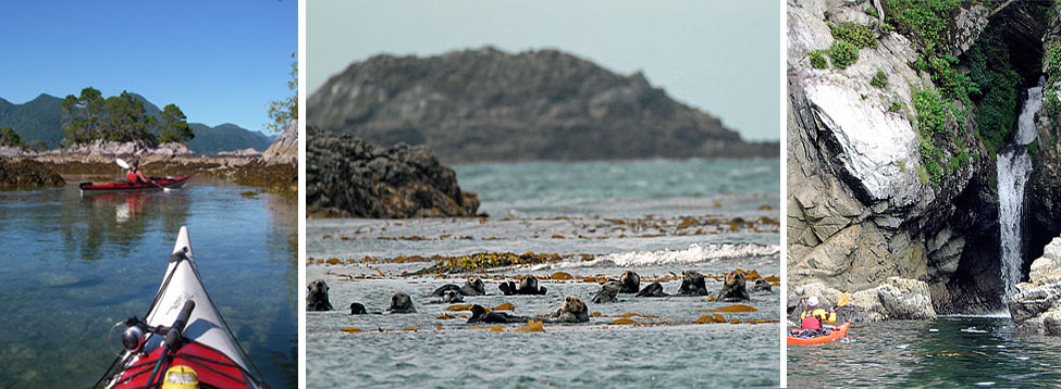 Guided Kayaking with Pacific Otters