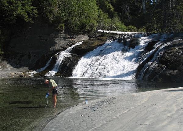 Calvin Falls/Nootka Island